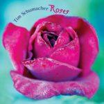 rosescoversized